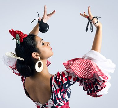 Illustrative image for Flamenco
